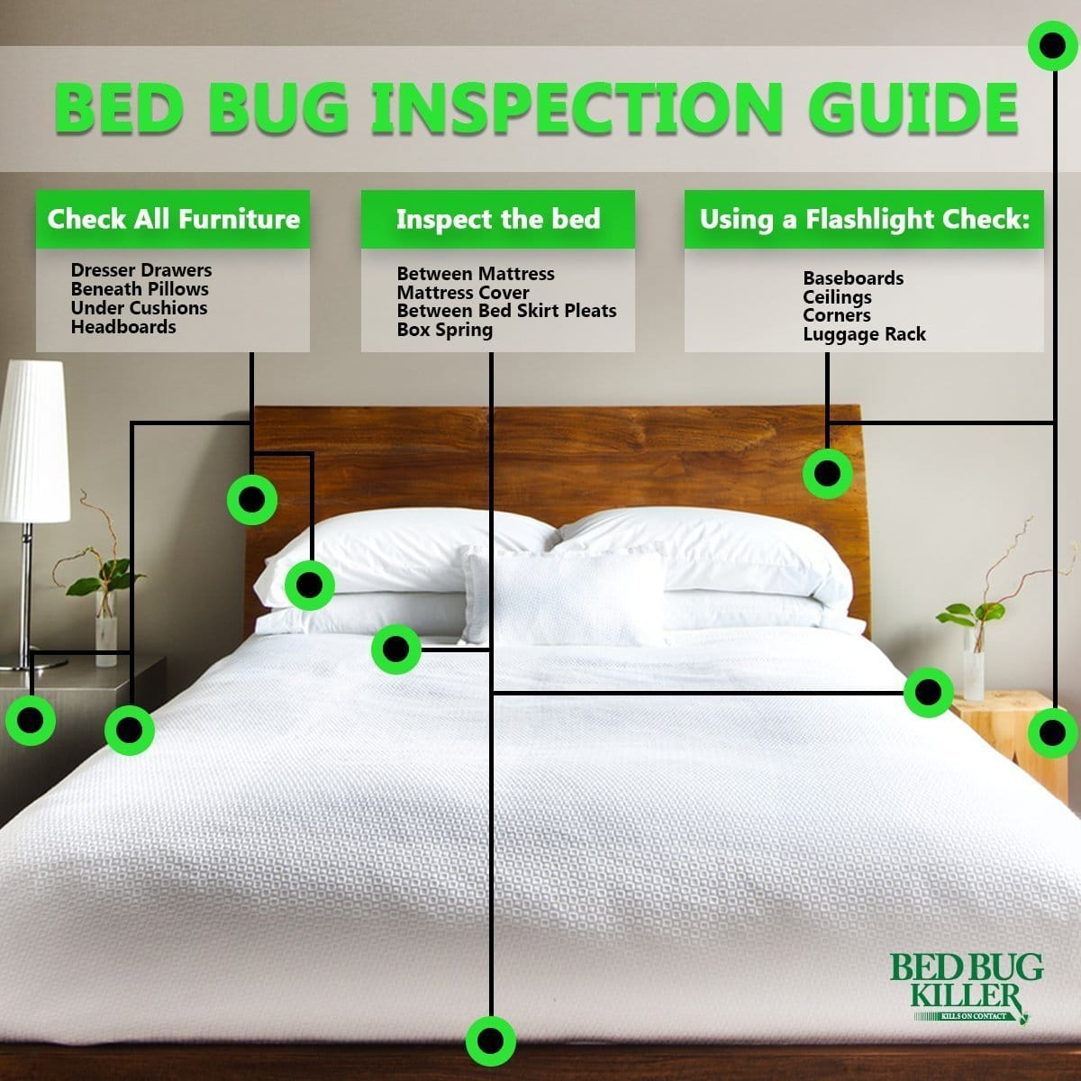 How to check for bed bugs in hotel rooms and other public How to buy a bed