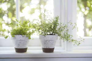DIY Flower pots Mother's day gift idea