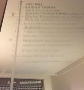 height chart mirror at hard rock hotel