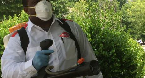 Orkin Pest Control Mosquito Treatment