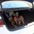 Super spacious trunk in 2016 Kia Optima