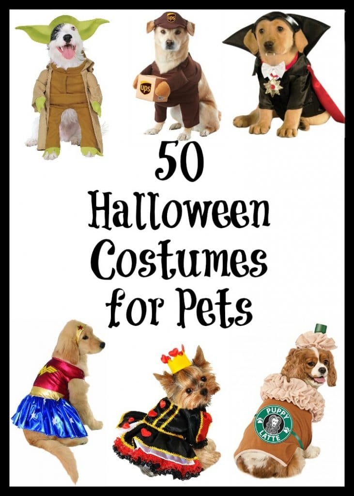 Dressing up for Halloween is not just for kids anymore. Here's a great list of creative and adorable Halloween Costumes for Pets available on Amazon. Star Wars pet costumes, princess pet, superman pets, even a cute starbucks latte costume