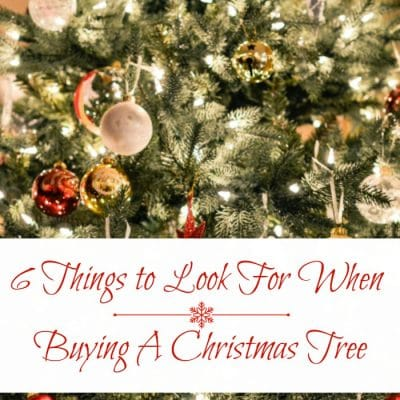 Real Christmas Trees Vs. Artificial Trees – 6 things to look for when buying a Christmas Tree