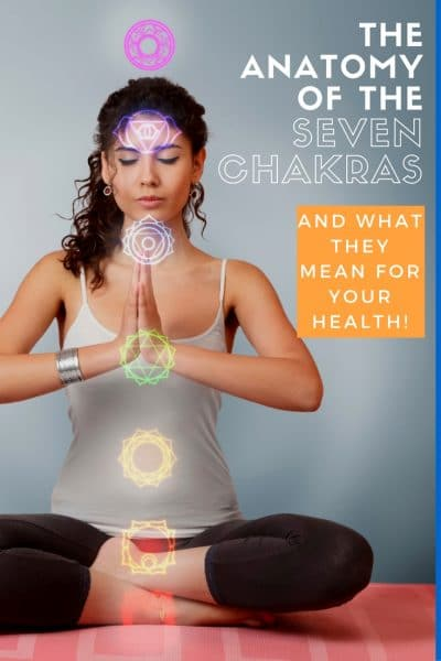 The Anatomy of the Seven Chakras and Spinal Energy Centers and What it Means for Your Health | Wellness Wednesday