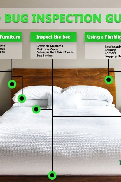 How to check for bed bugs in a hotel room or other public places