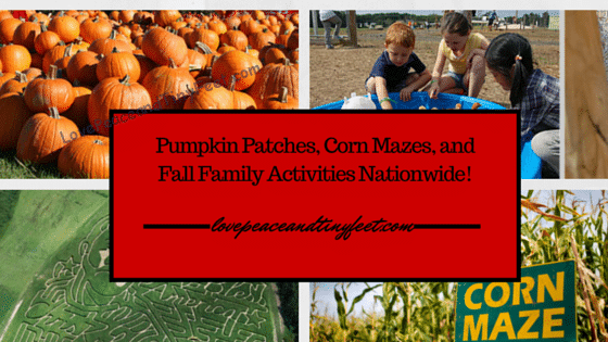 Pumpkin Patches, Corn Mazes, Fall Family Activities
