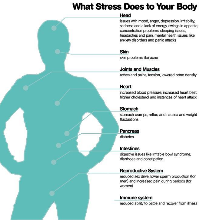 Effects of stress on your body