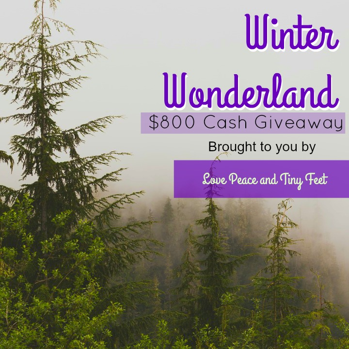 winter wonderland cash giveaway