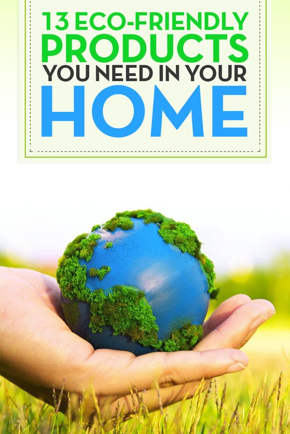 13 eco friendly products you need in your home for Green products for the home