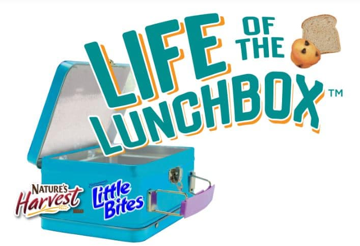 Having trouble with the food that you need to prepare for your family? Well, why don't you partner it with a perfect Lunchbox? See more about how you can add some life to the lunchbox.