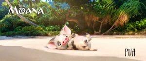 Moana's pet pig Pua