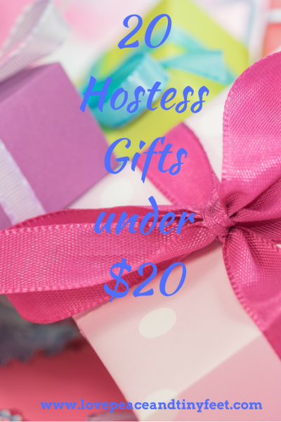 20+ Hostess Gifts Under $20