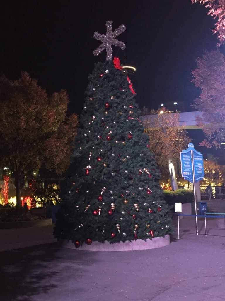 Christmas tree at the Georgia Aquarium