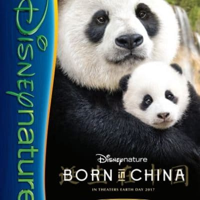 Free Kids Activity Packet from DisneyNature Born in China