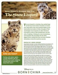 Born in China Snow leopard cubs activity pages