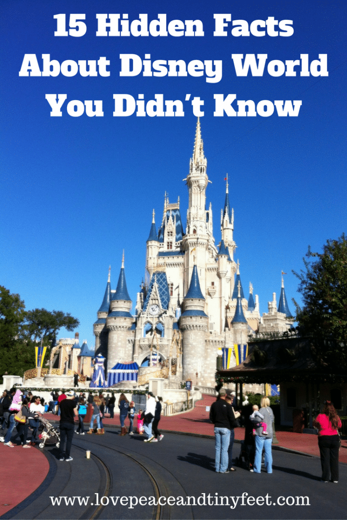 What you may not know is that there are a ton of behind the scenes or hidden things among the world of Disney that keeps the magic alive and makes it the amazing place that everyone loves today. Today I am going to be sharing with all of you 15 hidden facts about Disney that you may not know about, so if you're in to learn more the wonderful world of Disney keep on reading!