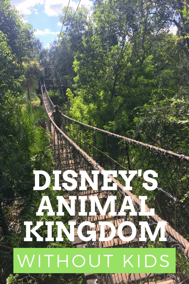 Disney's Animal Kingdom without kids is an unbelievable adventure. From the Wild AfricaTrek to Safaris After Dark, here's what to see and do on your next trip to Animal Kingdom with or without  kids.