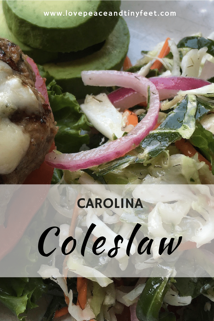 Unlike any other salad, this Carolina Coleslaw doesn't need mayonnaise. This is delicious with grilled burgers, chicken wings and other picnic or potluck favorites. Try this now!