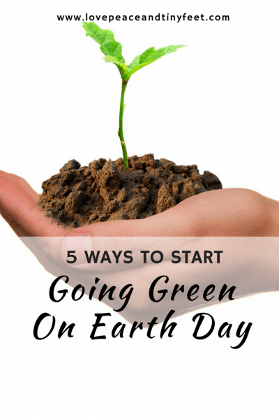 5 Easy Ways to Start Going Green For Earth Day {Guest Post}