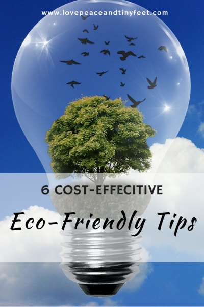 6 Cost-Effective Eco-Friendly Tips