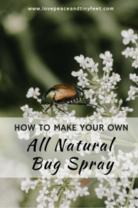 How to make your own DIY all-natural bug spray with essential oils