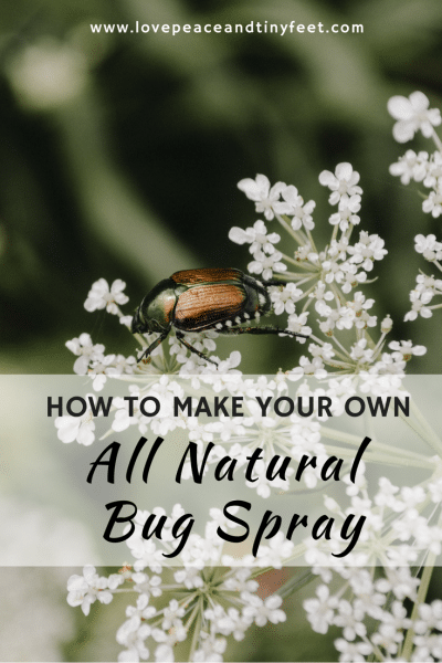 Essential Oil Bug Spray: How to make your own at home