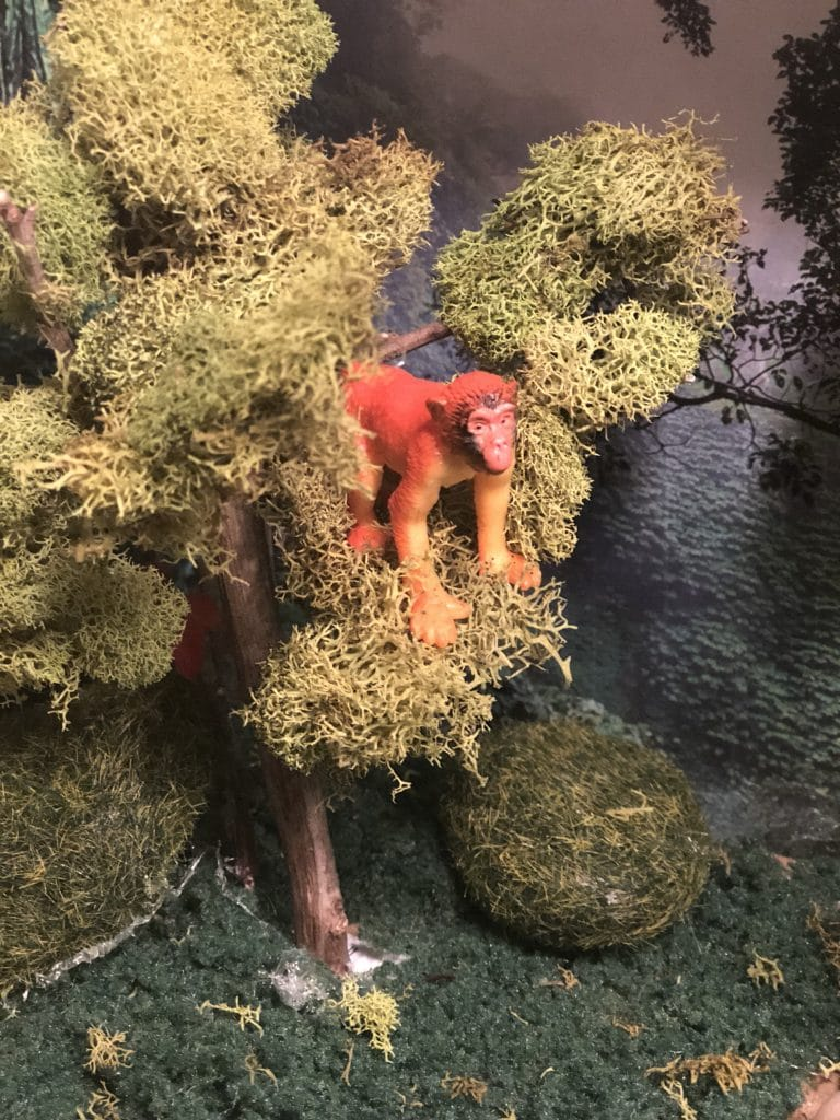 how to make the trees in a rainforest diorama for school project
