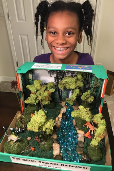 How to make a Tropical Rainforest Diorama for under $20 | DIY Science Projects for Kids