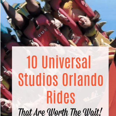 Universal Studios Orlando Rides that are worth the wait